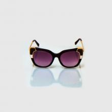 عینک آفتابی Salvador مدل SF 889SS